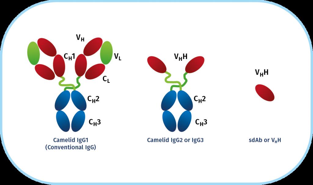 Biotherapeutics graphic 1